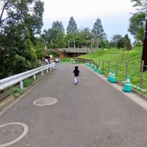 八木山動物園ナイトズージアム2019に行ってきた