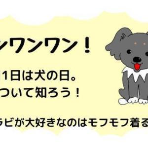 ワンワンワン!今日は犬の日と着る毛布は誰のもの?
