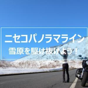 【ニセコパノラマライン】開通直後!雪原と雪壁の間を走り抜ける絶景快走路!