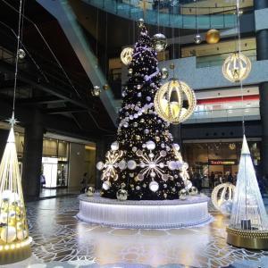 ランチ取材が出来ていないのでクリスマスツリーの画像をご覧ください。
