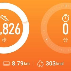 【ダイエット】11月27日の歩数と、衝撃の事実「1日1万歩で健康になる」は嘘!?