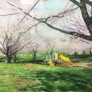 ピンク色に染まる公園