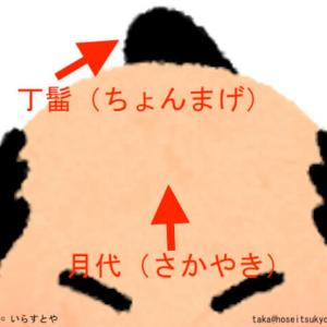 武士の髪型|なぜ武士はちょんまげ(丁髷)に月代(さかやき)なのか?