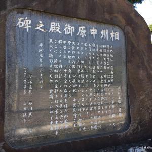 中原御殿跡(神奈川県平塚市)|裏門が現存する徳川家康公の御殿跡