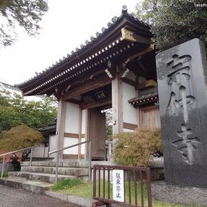 宗仲寺(神奈川県座間市)|家康公お手植えの銀杏が残る家康公ゆかりの寺