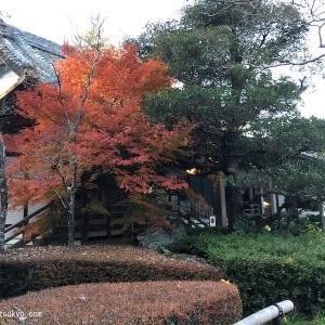宗源院(静岡県浜松市)|「三方ヶ原の戦い」で討死した成瀬正義らが眠る寺