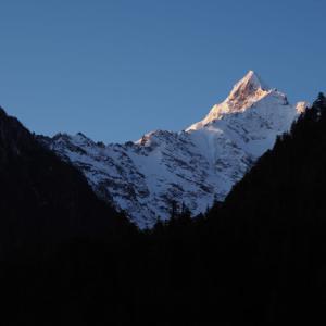 """朝日に照らされた黄金色の雪山の絶景!チベットの秘境・雨崩の快晴の朝で""""早起きは三文の徳""""を感じる【神湖1/3】"""