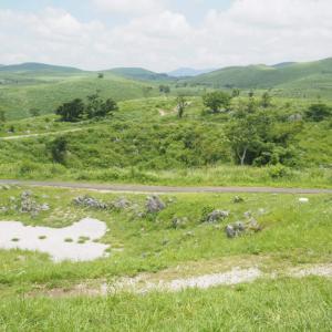 爽やかなカルスト地形の高原!地理の授業で習った山口県の秋吉台へ実際に行って来た