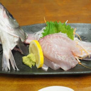 店員さんが愛想悪い?!鳥取県の海鮮食堂「おはよう堂」は荒々しいぶつ切りのお刺身が絶品だった