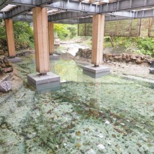 青森県下北半島の秘湯!むつ市「奥薬研温泉 かっぱの湯」は大自然の中の癒される無料野湯だった