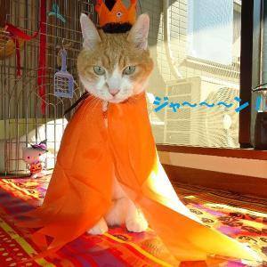 カボチャマンと魔法使いとパンプキン王子