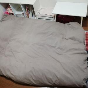 愛用の寝具・プリマロフトとシンサレート