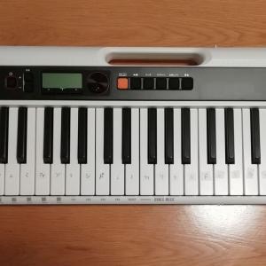ピアノが両手で弾ける・カシオトーン