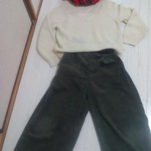 服の持ち数を見直す・年間被服費3千円!?