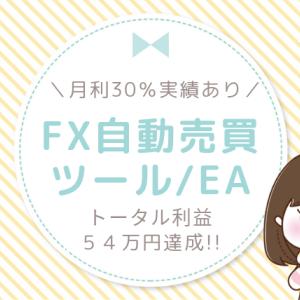 【月利30%の実績】トータル54万円を稼いだFX自動売買ツールEAのホームページが完成しました