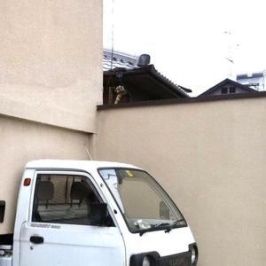 【ภาษาญี่ปุ่นญี่ปุ๊นญี่ปุ่น】ที่จอดรถพอดีเป๊ะ