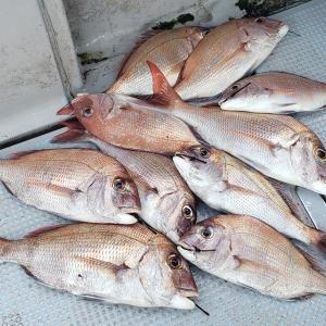 2020年8月5日 タイラバ釣行