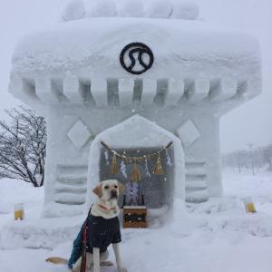 雪に大喜び♪
