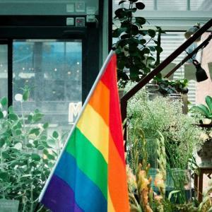 イギリスが史上初「LGBT航空便」を開始【リトアニア】
