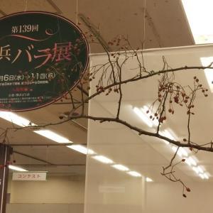 秋のバラ展