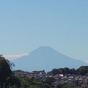富士山きれいでした