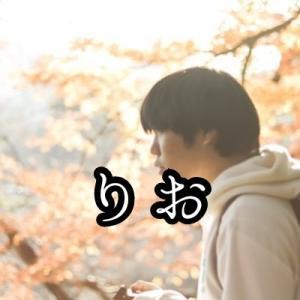 ブログ感想文 「鹿沼秋まつり」▼りおさん
