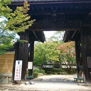 湖東三山 金剛輪寺に行ってきました。
