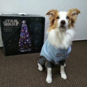 STAR WARSのクリスマスツリー☆