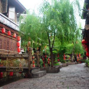 (107)中国◆麗江でビザ延長なるか!