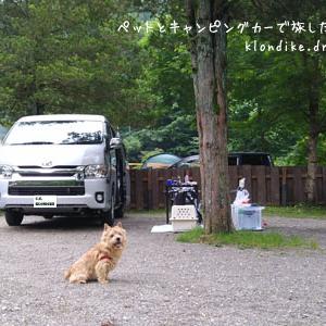キャンプ・デビュー決定!