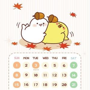 今日から11月です(* ॑꒳ ॑*)ダイハツです✩.*˚