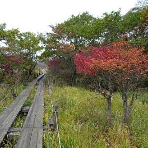 那須 板室温泉の旅 ~沼原湿原展望デッキ経由で周遊完遂~
