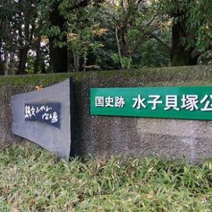 晩秋の風景 ~水子貝塚公園~