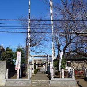令和2年 お正月の風景 ~針ヶ谷氷川神社~