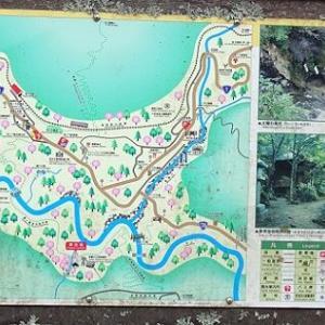 箱根の旅 ~チェンバレンの散歩道 吊り橋~
