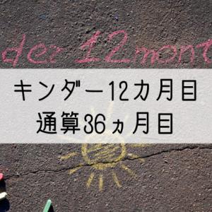 パルキッズキンダー12カ月目の効果(通算36カ月)