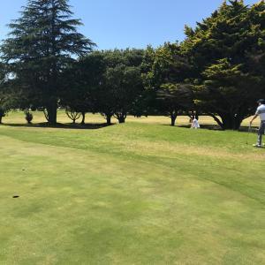 NZでゴルフ