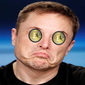 【爆上げ】テスラ・ビットコインに夢中の皆さん⁉私は○○に追加投資しましたよ⁉