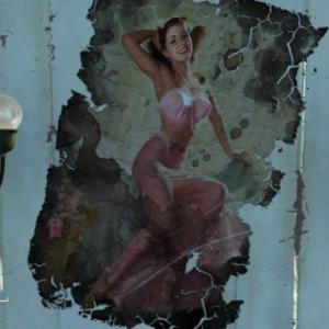 Pinups of the Wasteland  (Erotic is art)