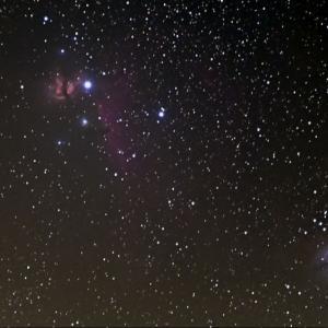 Z 6Ⅱ DX 換算300mmで撮る馬頭星雲
