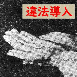 手による聖体拝領、臨時の奉仕者を日本に導入していった過程の不可解な点など