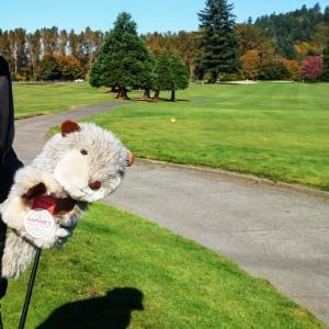 秋晴れのゴルフ ~ エアフライヤーオーブントースターで手羽先
