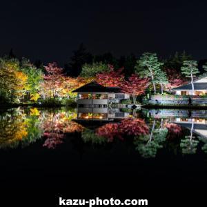 昭和記念公園ライトアップ「秋の夜散歩」を撮影@東京の紅葉写真名所