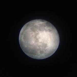 月を見てきました