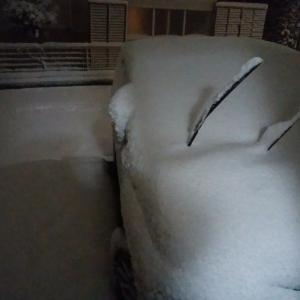 今日は東京も雪が降るかもしれない