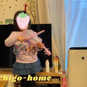 ディズニードリームオンオーケストラを4歳女の子へのクリスマスプレゼントに!自分で選ぶから楽になった!