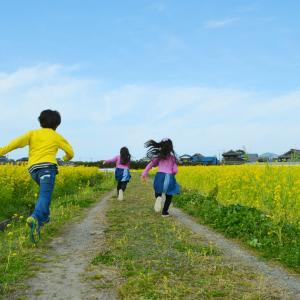 距離と走り方(1)