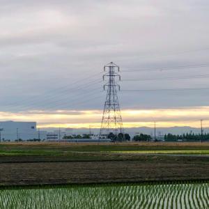 曇天下に垣間見る朝日と鉄塔 ・ 6月1日月曜日