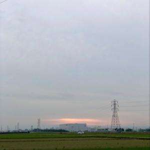雨が降る前の薄日と鉄塔 ・ 6月18日木曜日