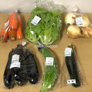 野菜の価格情報・JA産直で買い物・7月6日月曜日